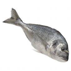 Jūraskarūsa zeltainā (Dorada), ķid., 300-400g, IQF, 1*5kg (t.s. 4kg), Isola